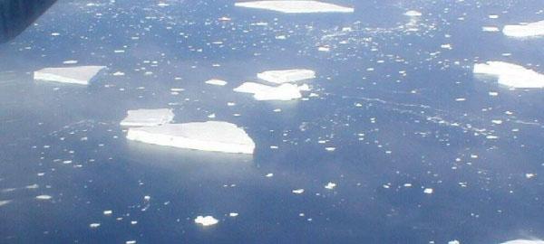 El Mar de Ross tendrá la mayor área marina protegida del mundo