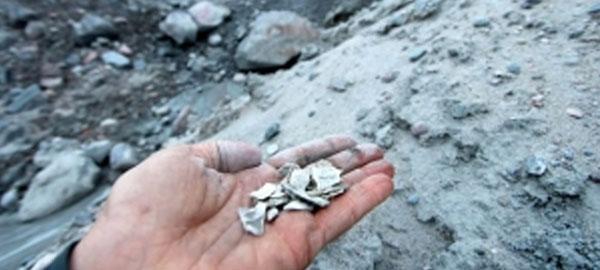 El deshielo descubre los fósiles más antiguos de la Tierra
