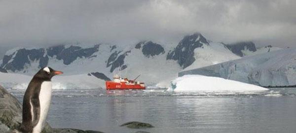 los-glaciares-de-la-antartida-se-hunden-bajo-masas-de-agua-caliente