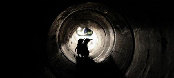 Construyen un túnel subterráneo en Nueva Zelanda para proteger a sus pingüinos