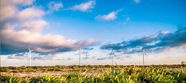 Gran Canaria se vuelca con las energías renovables