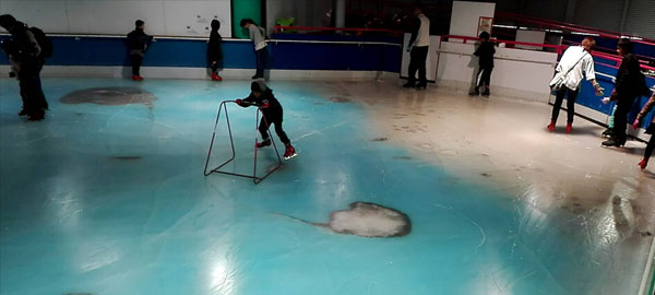 Cerrada una pista de patinaje en Japón que atrapó 5.000 peces en el hielo