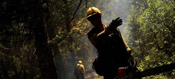 El Cabildo de Gran Canaria inicia las primeras quemas para prevenir incendios forestales