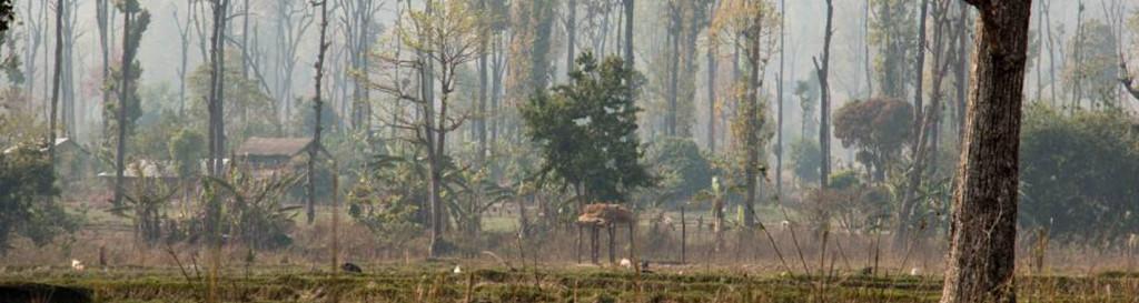 Las acciones humanas dañan un centenar de sitios reconocidos por la Unesco como Patrimonio Natural de la Humanidad