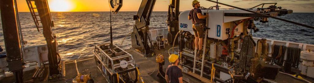 Las fosas más profundas del océano tienen niveles demasiado altos de contaminación