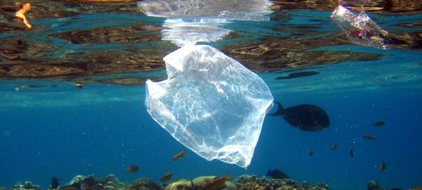 Una campaña de la ONU para acabar con la basura plástica en los océanos