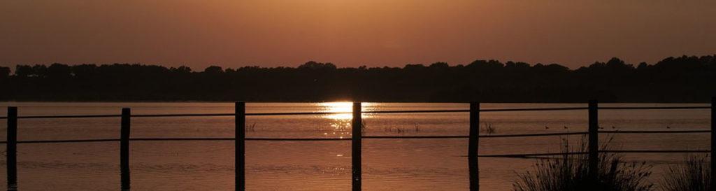 El cambio climático junto a las amenazas locales pueden llevar a extinción a cinco humedales como Doñana y Tablas de Daimiel