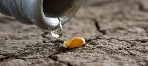3 innovaciones para conservar y recuperar el agua