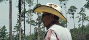 Comunidades indígenas y rurales de México demandan ser tomados en cuenta para decidir sobre sus bosques