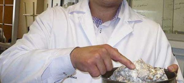 Con hongos purifican agua contaminada por analgésicos