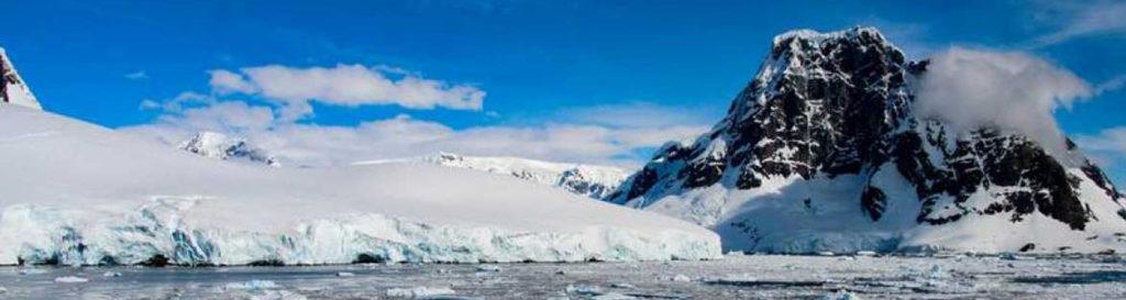 El deshielo del Ártico genera más vida en el mar