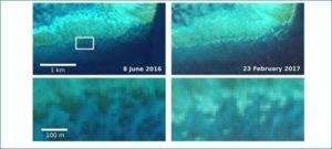El deterioro de la Gran Barrera de Coral, observado desde el espacio