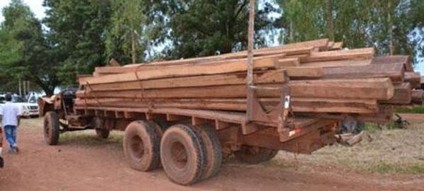 Incautan 30 toneladas de madera extraída ilegalmente en el Amazonas