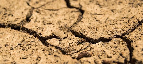 La lluvia histórica ayuda a predecir el calentamiento global