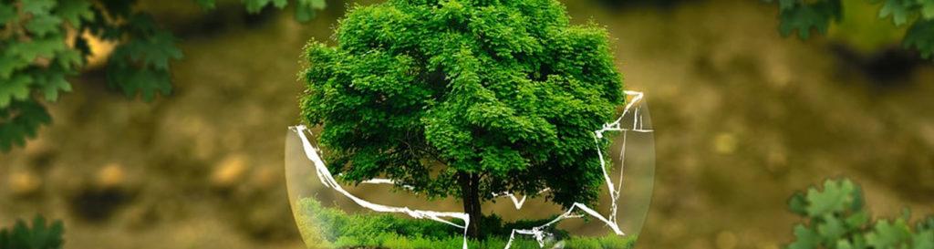 Los conflictos ambientales superan los 2.000 casos en todo el mundo
