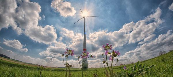 Greenpeace pide que la ley de cambio climático incluya el 100% de energía renovable en España para 2050