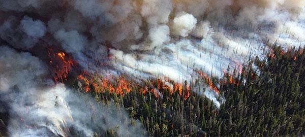 Los incendios como el de Portugal cada vez serán más frecuentes