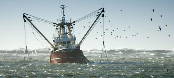 Los subsidios a la sobrepesca y la destrucción de los océanos