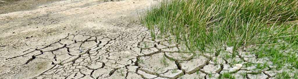 Más de dos tercios de España, en riesgo de desertificación
