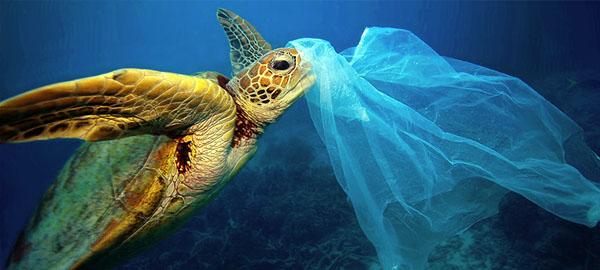 Tiramos al mar 7 millones de toneladas de basura cada año