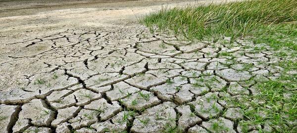 Inversión y resiliencia para afrontar la sequía