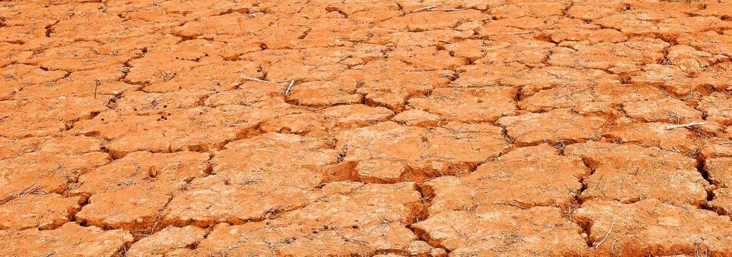 La FAO alerta de la crisis alimentaria en África oriental tras tres años de lluvias escasas