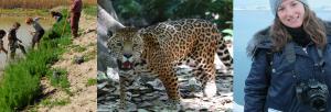 La Fundación BBVA reconoce la conservación de la biodiversidad