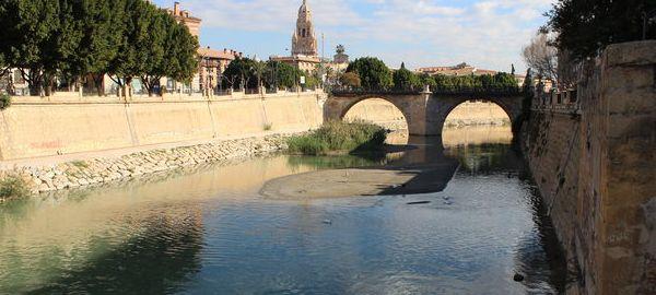 El río Segura contiene hidrocarburos y plaguicidas a su paso por Murcia