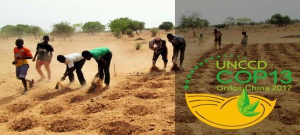 La necesaria protección de los suelos áridos