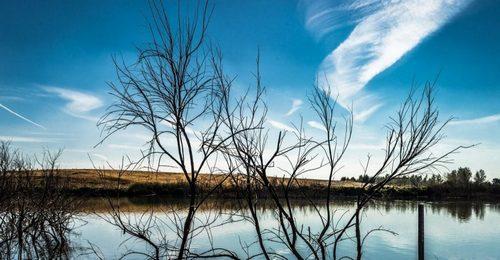 El año con menos agua embalsada de la década