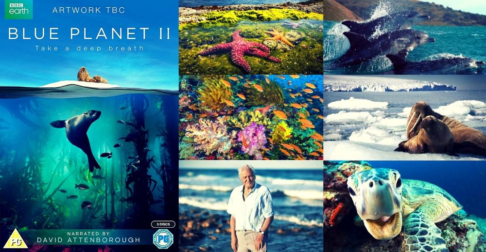 El documental 'Blue Planet II' fascina a los espectadores