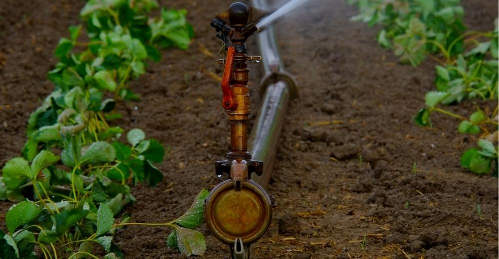 Ecologistas en Acción pronostica una crisis de abastecimiento de agua para 2018
