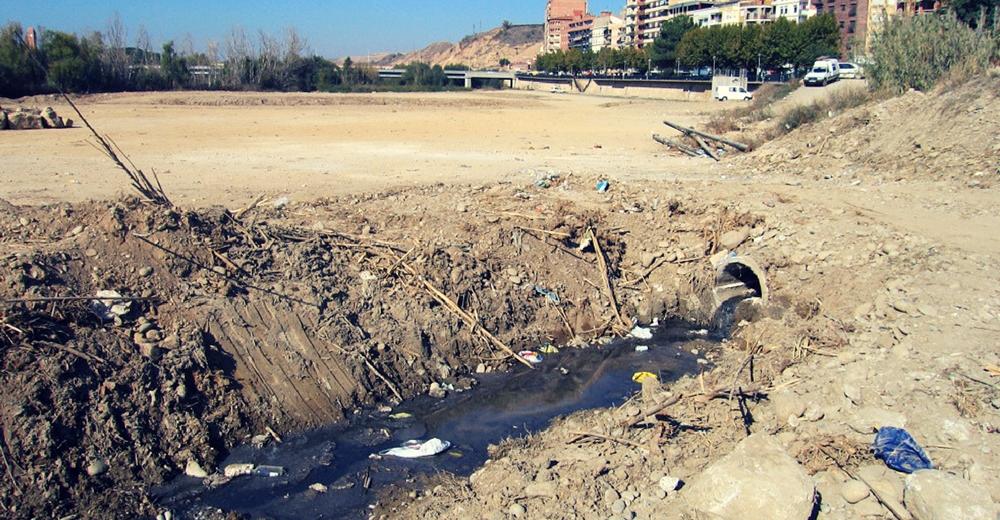 Un vertido ilegal habría provocado la muerte de miles de peces en Huesca