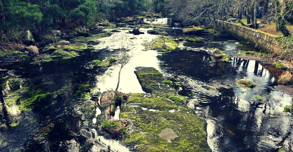 El Duero y el Miño con los niveles más bajos de agua desde 1995