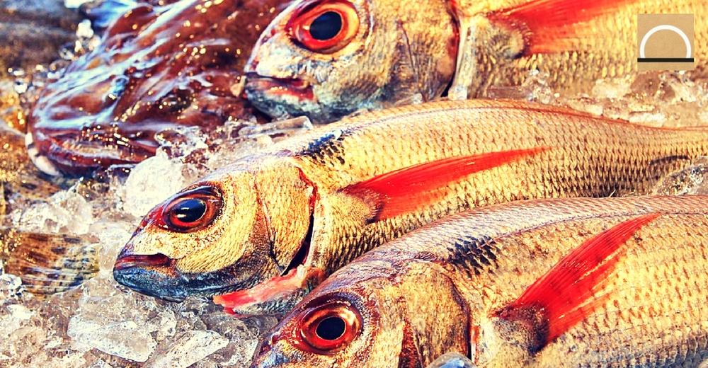 Los españoles apuestan por el pescado sostenible