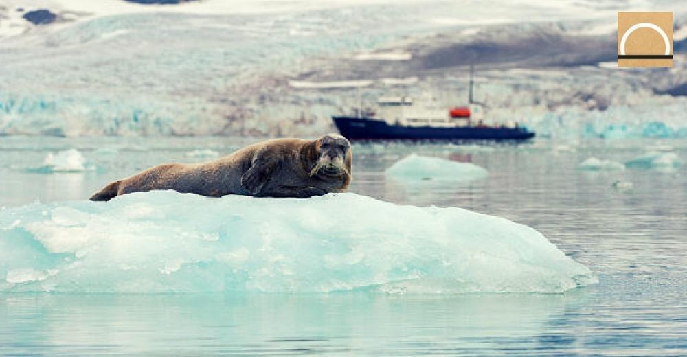 El deshielo y el calentamiento del Ártico ya son tendencias normalizadas