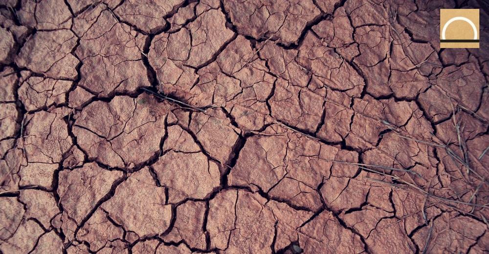 La gestión pública: ¿un nuevo modelo para gestionar la sequía estructural?