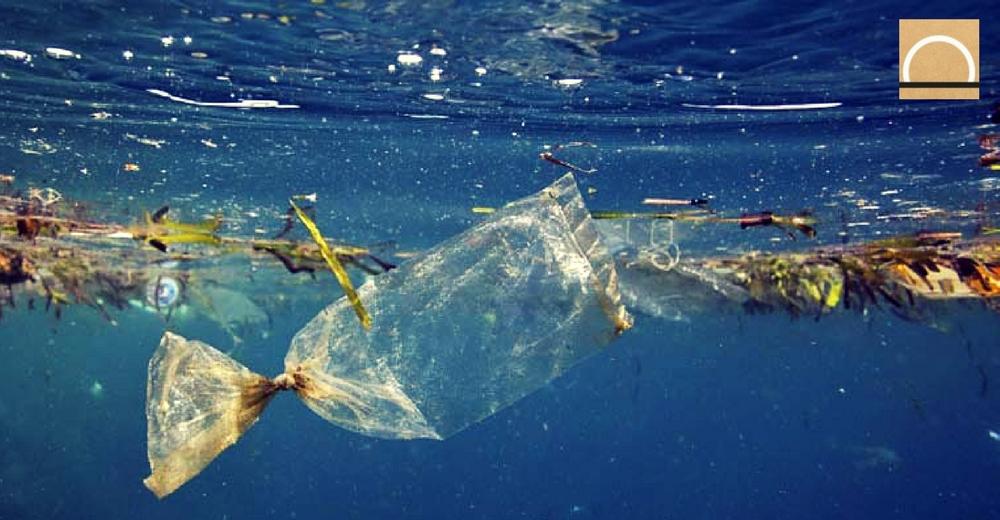 Libera advierte que el 80 % de la basura oceánica proviene del entorno terrestre