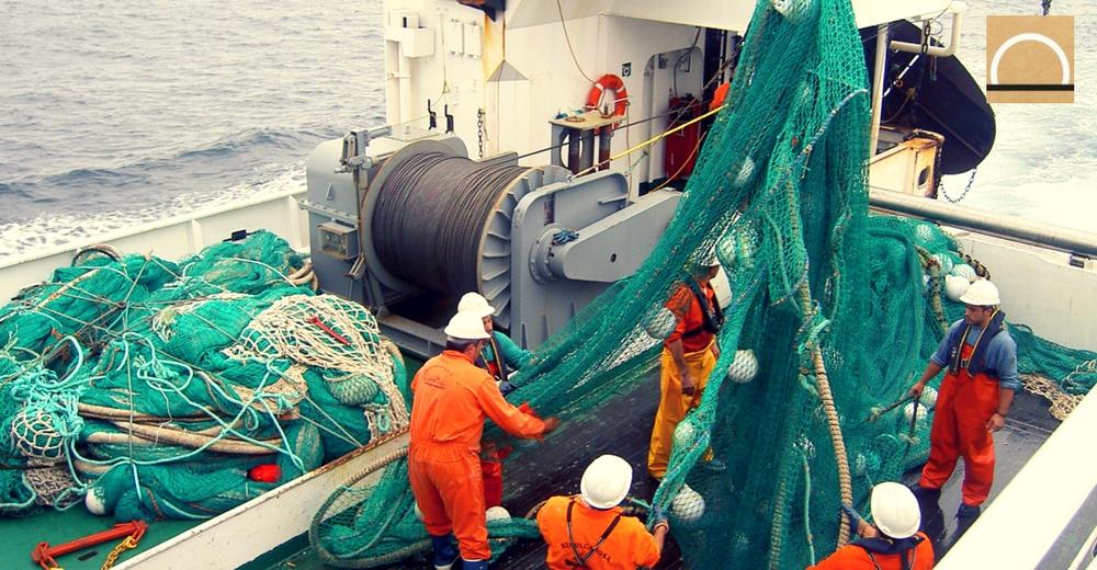 Medio Ambiente invertirá en 43 proyectos para promover la sostenibilidad en la industria pesquera