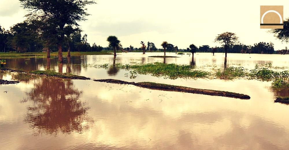 La CHS pide a los ayuntamientos de más de 20.000 habitantes actualizar los planes ante la sequía