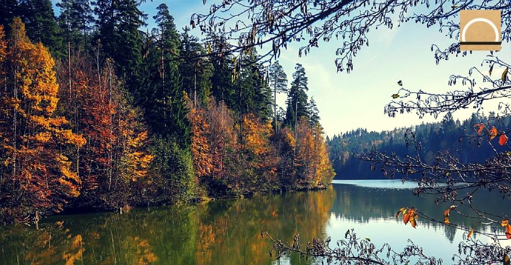 El agua embalsada supera el 38% en la tercera semana de diciembre