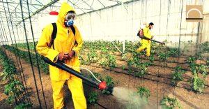 Exigen reducir a la mitad el uso de los pesticidas en España