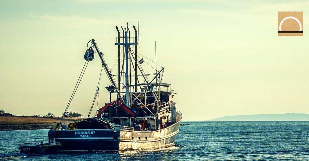 El Parlamento europeo votará hoy acerca de la prohibición de la pesca eléctrica