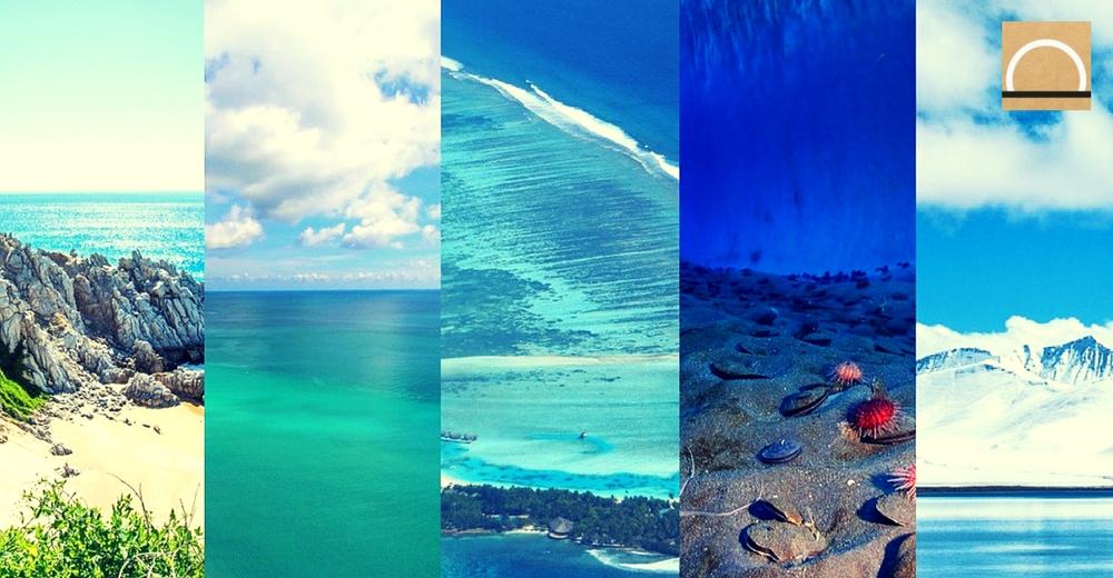 ¿Conoces los 5 océanos de la Tierra?