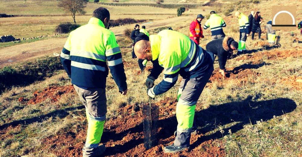 """""""Reforesta Zamora"""", el proyecto de Aquae que plantará 800 nuevos árboles"""
