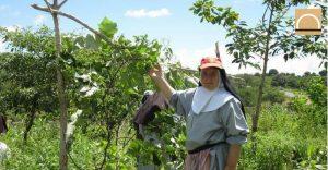 Un monja valenciana encontró agua subterránea  y diseña una presa en Kenia