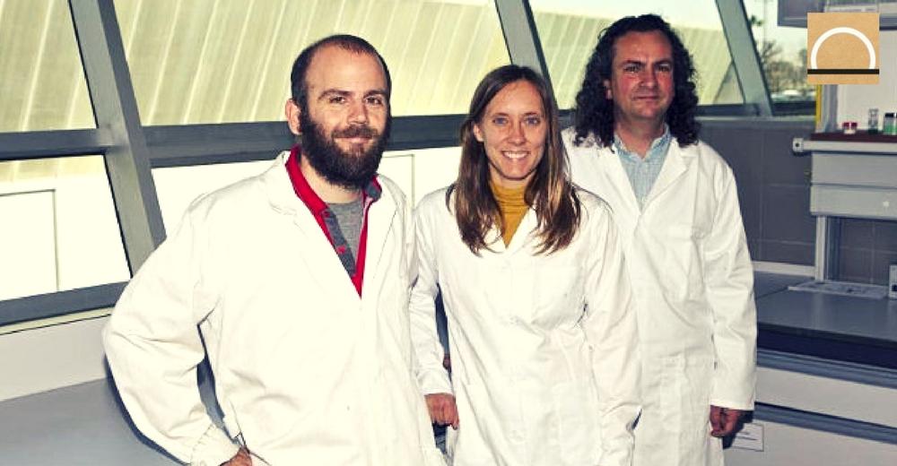 La UA desarrolló un sistema de nanopartículas de aceite de oliva para depurar el agua
