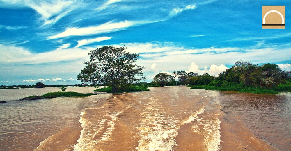 La contaminación amenaza la biodiversidad de la Ciénaga de Ayapel (Colombia)