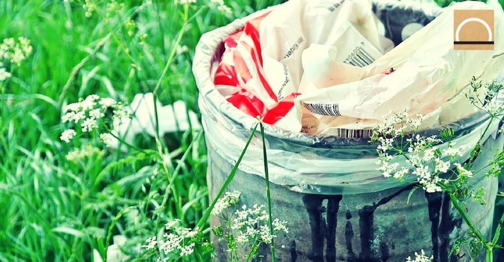 Identifican una bacteria para producir plásticos sin impacto ambiental