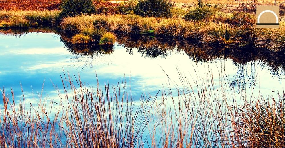 Aumenta el número de humedales en Andalucía